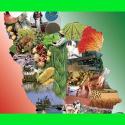 تحقیق کشاورزی و دامپروریدر ایران